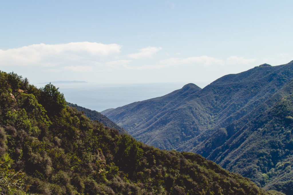 The easiest hike in LA with the best views of the canyons